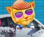 konuşan kedi araba yıkama