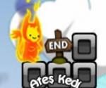 Ateş Cat