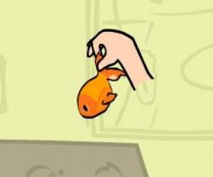 Balık Kurtarma