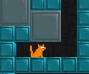Kedi Kurtarma