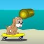 Kaykaycı Köpek