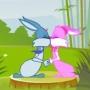 Sevimli Tavşanlar Öpüşme